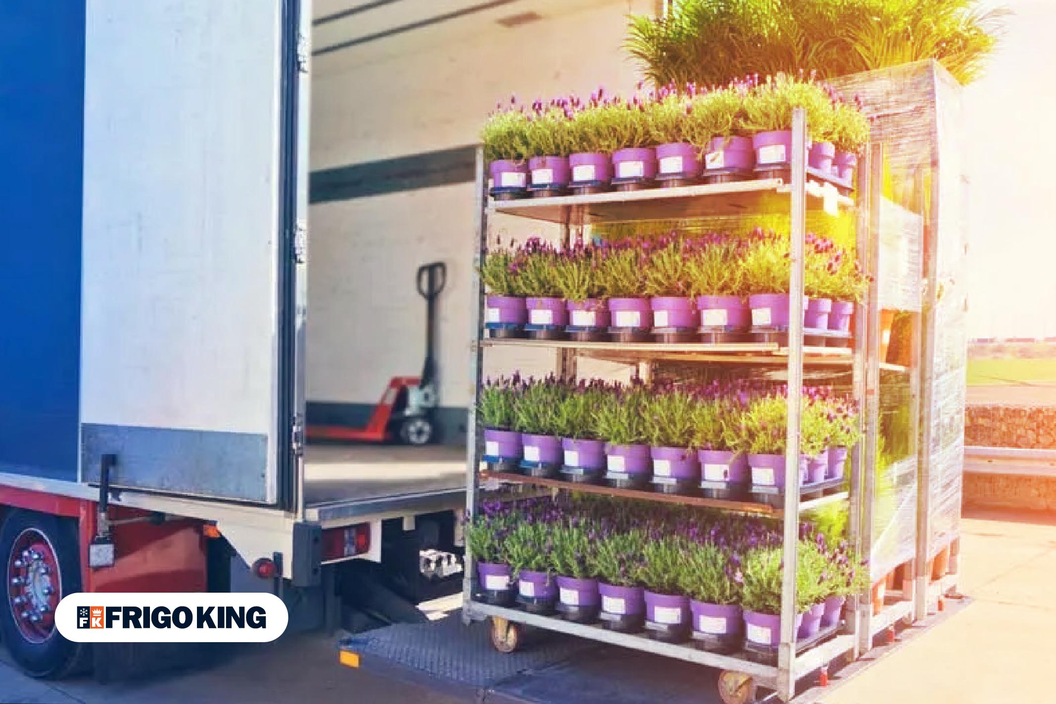 Identifique o melhor equipamento para o transporte de flores.